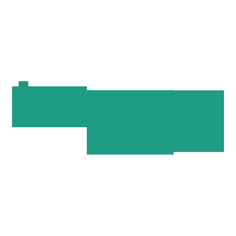 twogo_logo